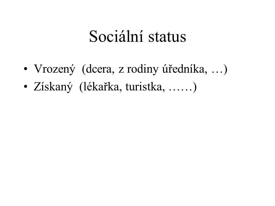 Sociální status Vrozený (dcera, z rodiny úředníka, …) Získaný (lékařka, turistka, ……)