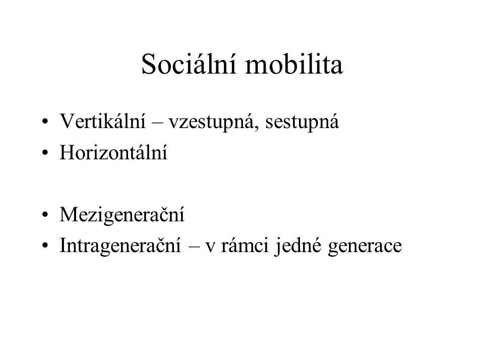 Sociální mobilita Vertikální – vzestupná, sestupná Horizontální Mezigenerační Intragenerační – v rámci jedné generace