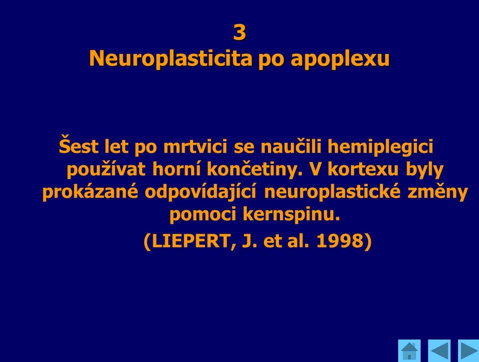3 Neuroplasticita po apoplexu Šest let po mrtvici se naučili hemiplegici používat horní končetiny. V kortexu byly prokázané odpovídající neuroplastick