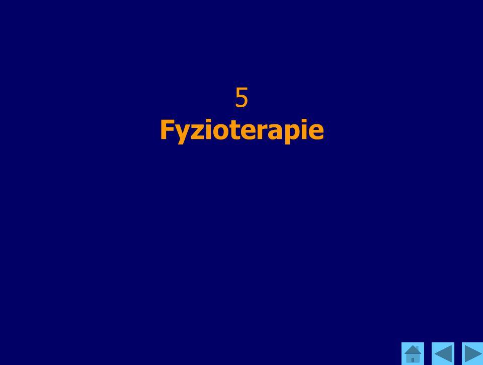 5 Fyzioterapie
