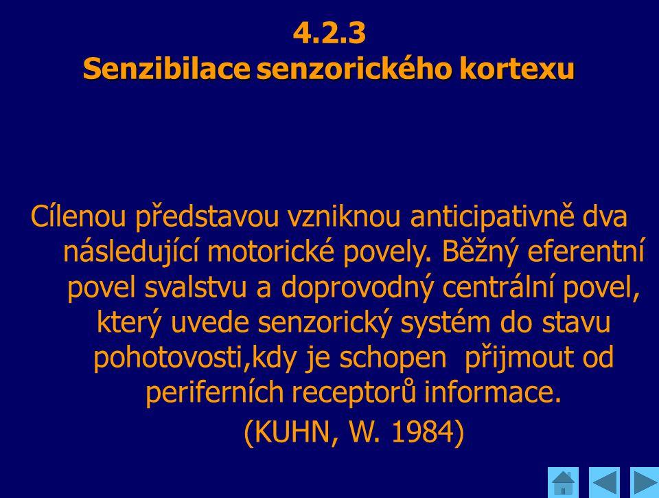 Senzibilace senzorického kortexu 4.2.3 Senzibilace senzorického kortexu Cílenou představou vzniknou anticipativně dva následující motorické povely. Bě