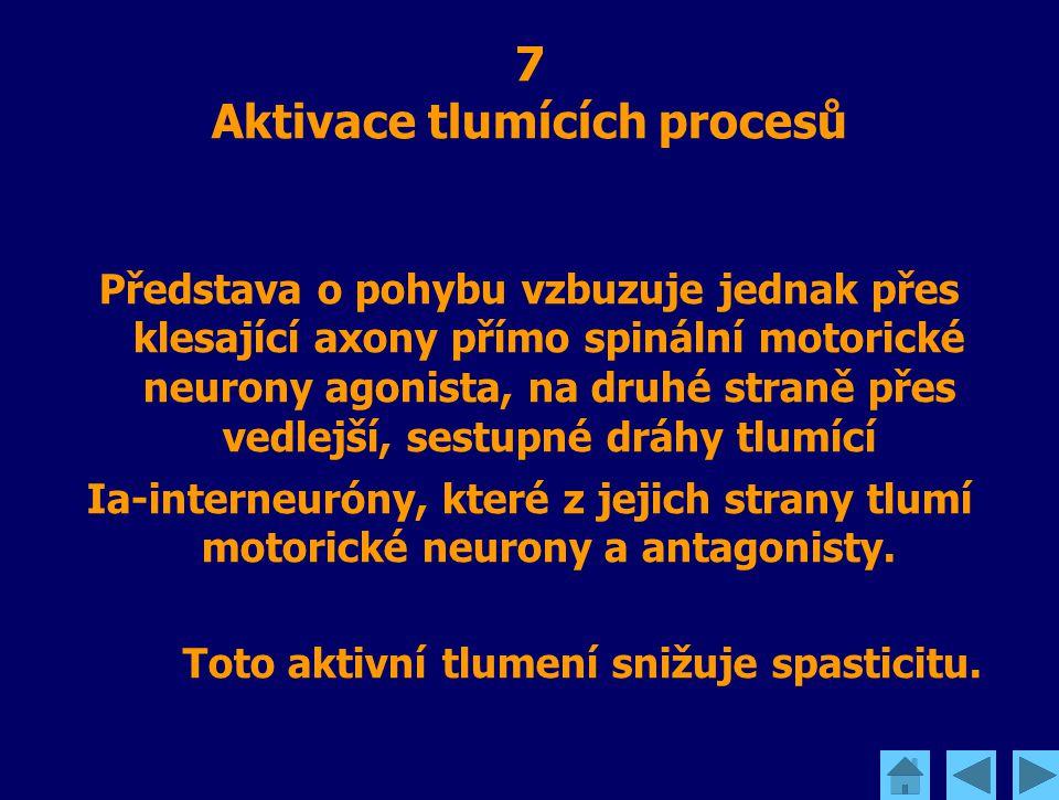 7 Aktivace tlumících procesů Představa o pohybu vzbuzuje jednak přes klesající axony přímo spinální motorické neurony agonista, na druhé straně přes v