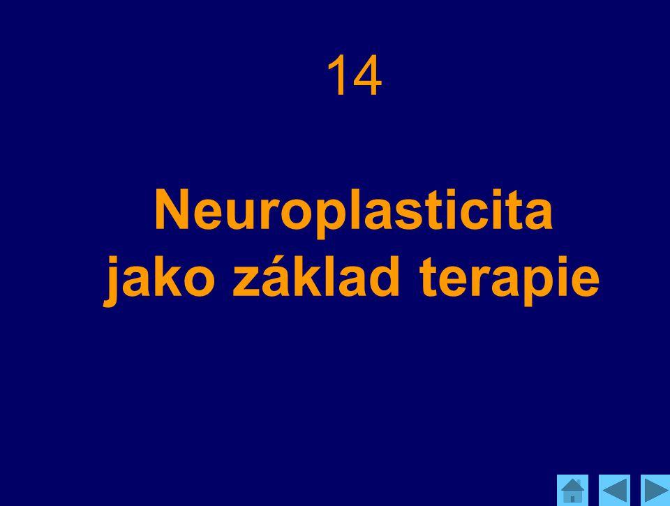 14 Neuroplasticita jako základ terapie