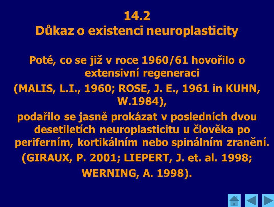 14.2 Důkaz o existenci neuroplasticity Poté, co se již v roce 1960/61 hovořilo o extensivní regeneraci (MALIS, L.I., 1960; ROSE, J. E., 1961 in KUHN,