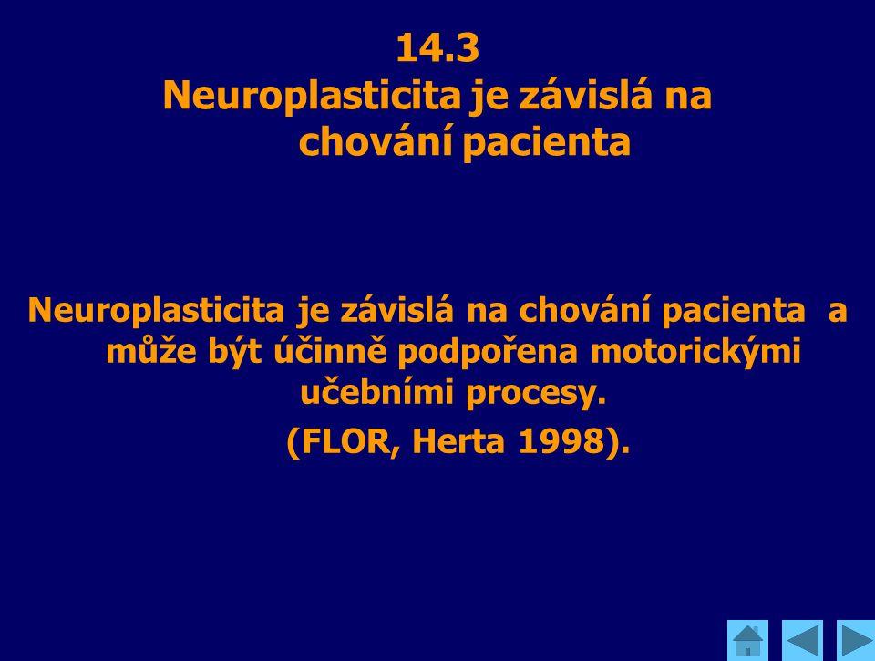 14.3 Neuroplasticita je závislá na chování pacienta Neuroplasticita je závislá na chování pacienta a může být účinně podpořena motorickými učebními pr