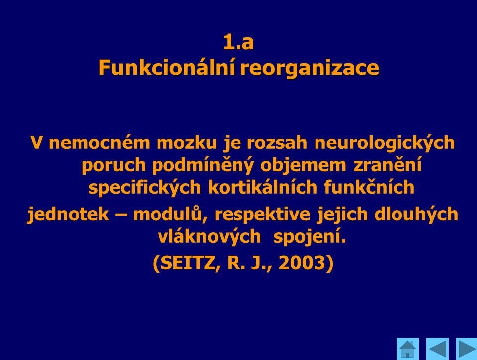 Funkcionální reorganizace 1.a Funkcionální reorganizace V nemocném mozku je rozsah neurologických poruch podmíněný objemem zranění specifických kortik