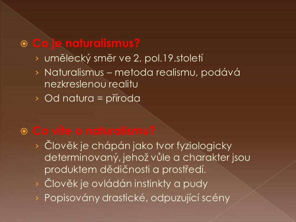  Co je naturalismus? › umělecký směr ve 2. pol.19.století › Naturalismus – metoda realismu, podává nezkreslenou realitu › Od natura = příroda  Co ví