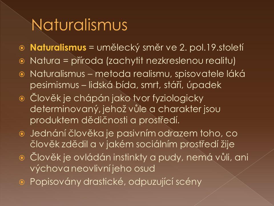  Naturalismus = umělecký směr ve 2. pol.19.století  Natura = příroda (zachytit nezkreslenou realitu)  Naturalismus – metoda realismu, spisovatele l