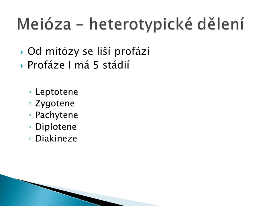  Od mitózy se liší profází  Profáze I má 5 stádií ◦ Leptotene ◦ Zygotene ◦ Pachytene ◦ Diplotene ◦ Diakineze