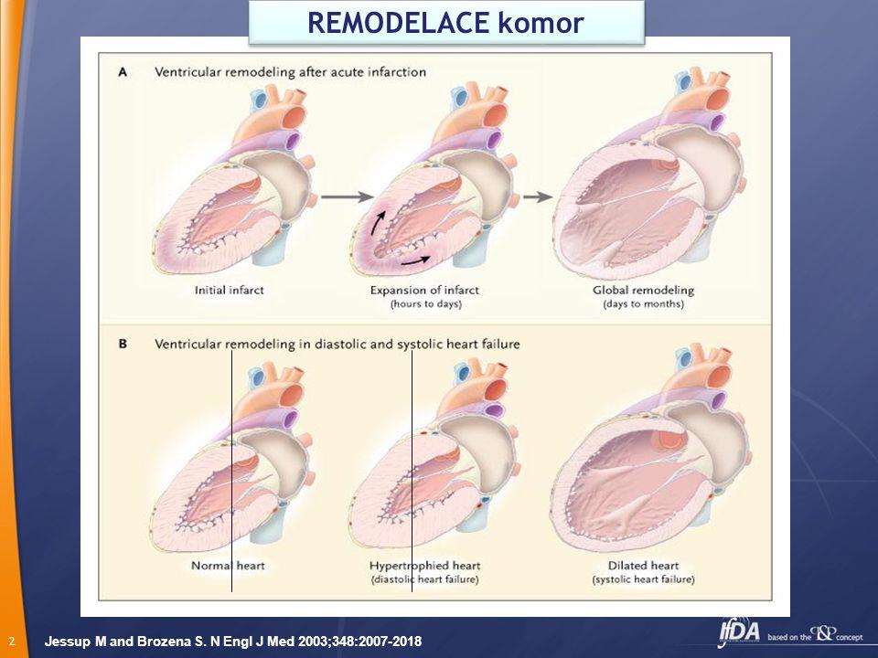 2 Jessup M and Brozena S. N Engl J Med 2003;348:2007-2018 REMODELACE komor