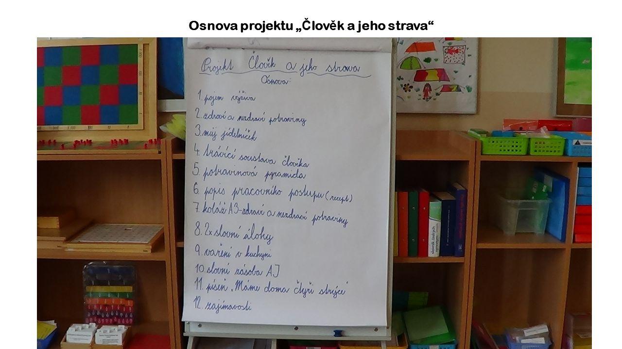 """Osnova projektu """" Č lov ě k a jeho strava"""