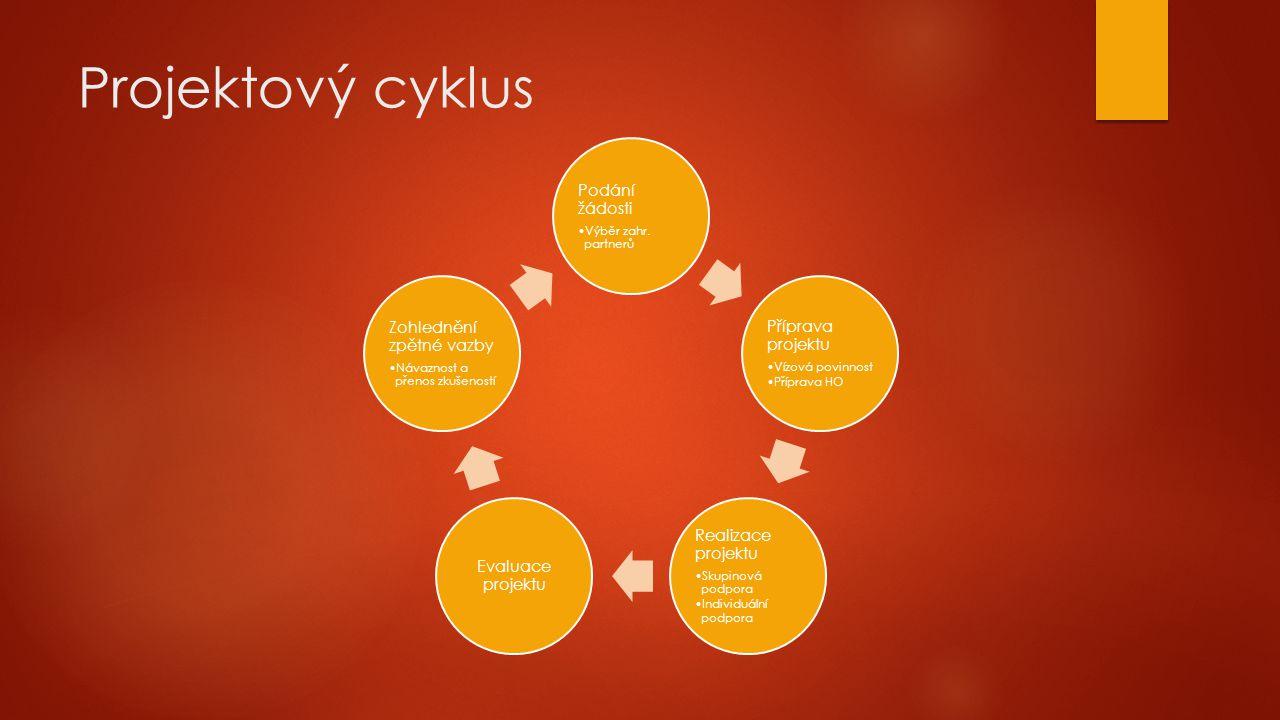 Projektový cyklus Podání žádosti Výběr zahr.