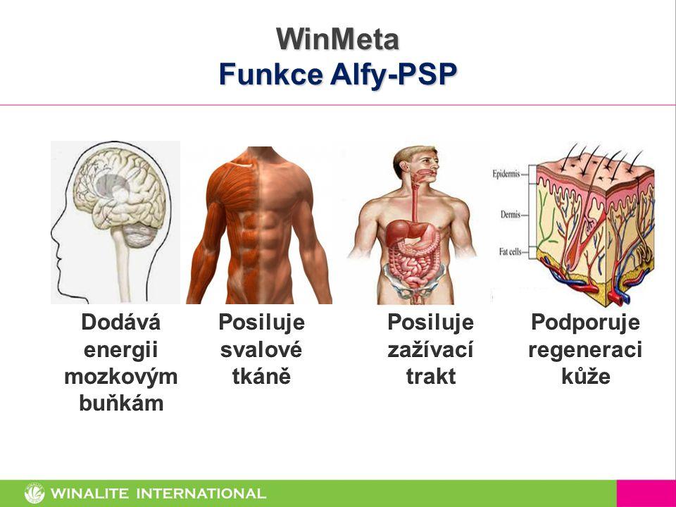WinMeta Funkce Alfy-PSP