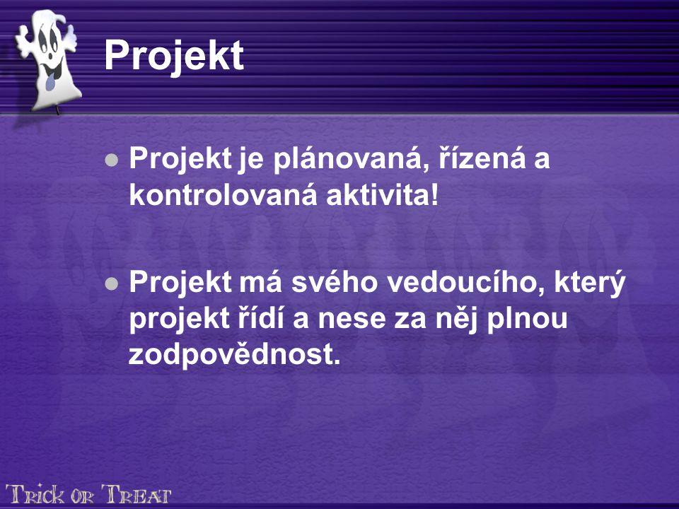 Projektový tým Seznam členů týmu s určením rolí Pouze jeden vedoucí.