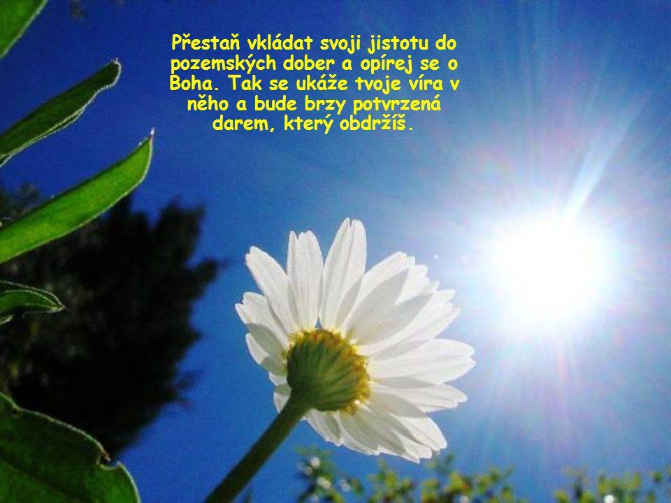 Zaujmi jako křesťan nový postoj, jímž je prodchnuté celé evangelium; postoj, který znamená neuzavírat se do sebe a nedělat si starosti.