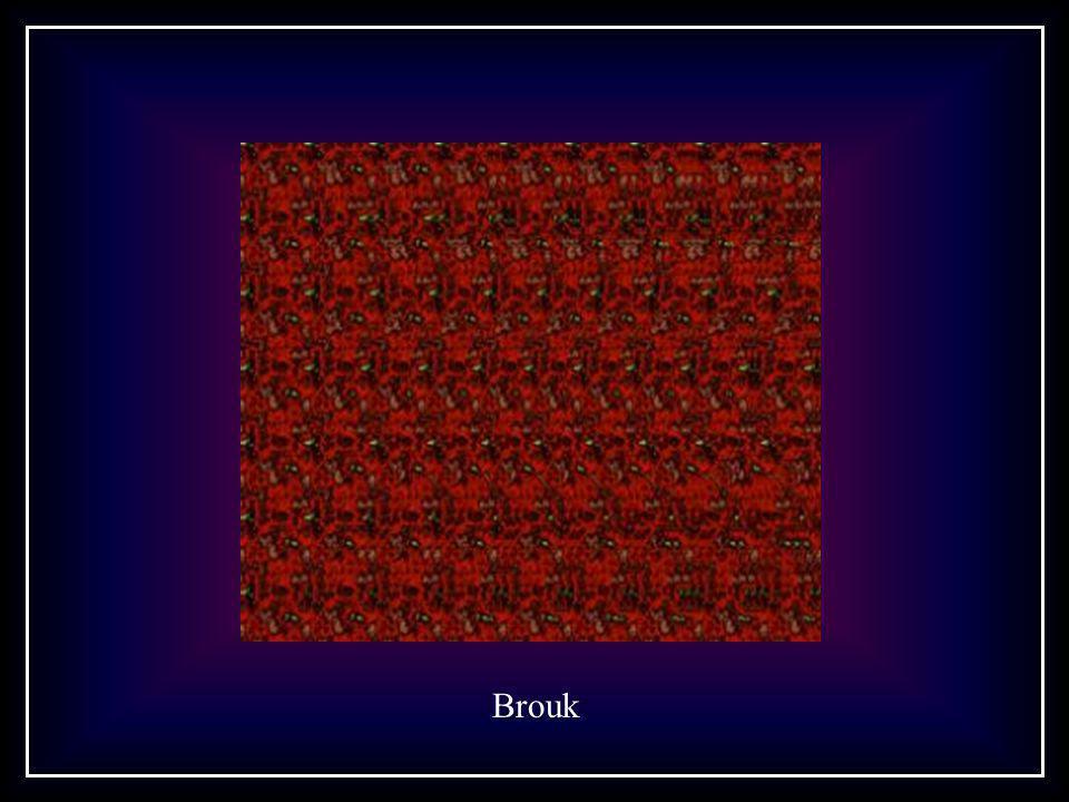 Brouk