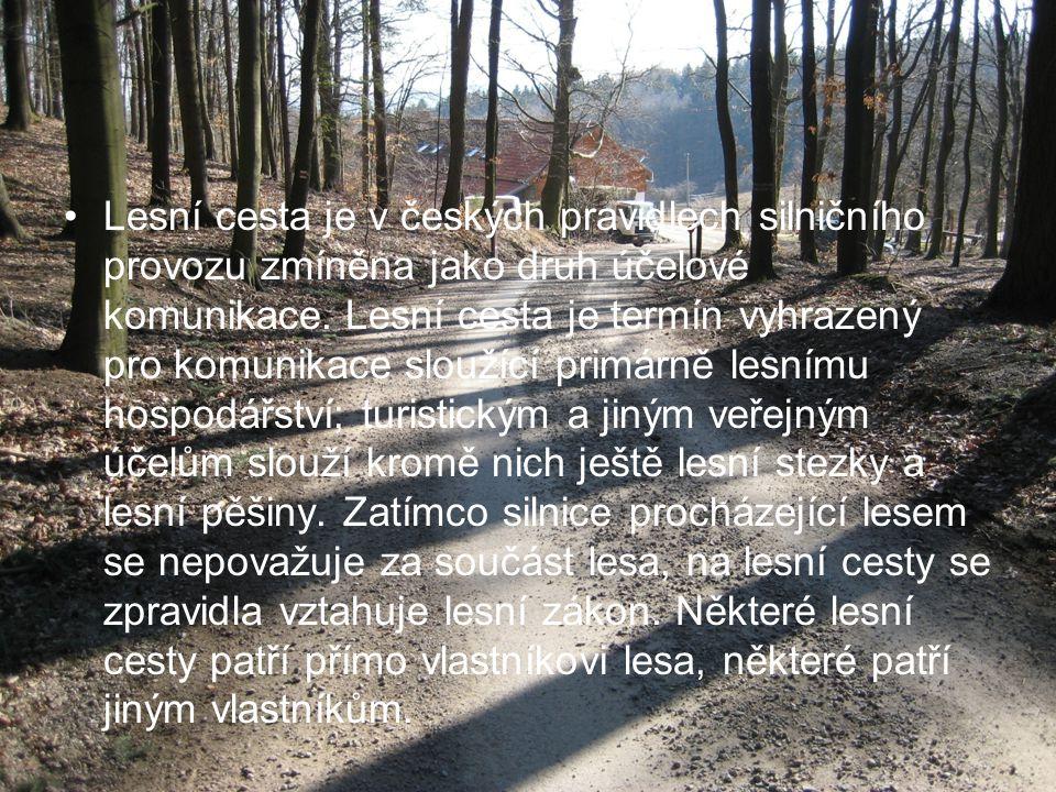 Lesní cesta je v českých pravidlech silničního provozu zmíněna jako druh účelové komunikace. Lesní cesta je termín vyhrazený pro komunikace sloužící p