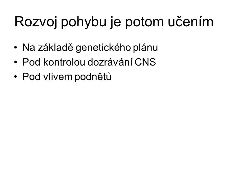 PLASTICITA CNS Až do 60.-70.