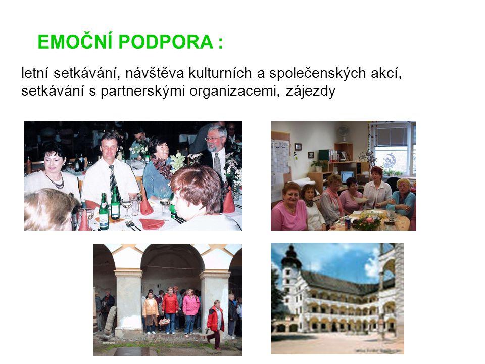 EMOČNÍ PODPORA : letní setkávání, návštěva kulturních a společenských akcí, setkávání s partnerskými organizacemi, zájezdy