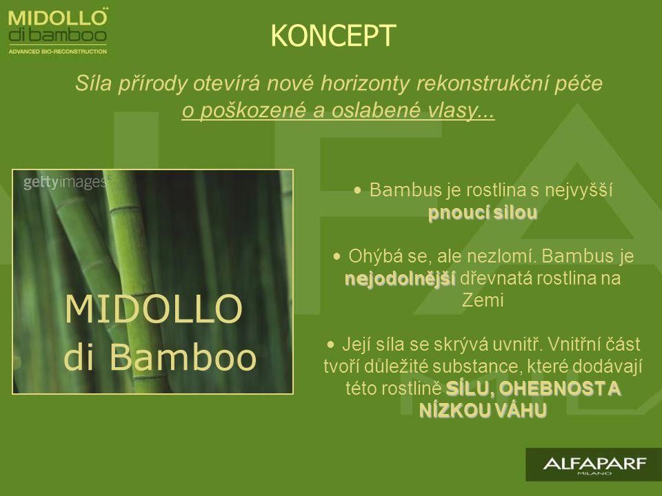 MIDOLLO di Bamboo Síla přírody otevírá nové horizonty rekonstrukční péče o poškozené a oslabené vlasy … KONCEPT pnoucí silou Bamb us je rostlina s nejvyšší pnoucí silou n e jodolnější Ohýbá se, ale nezlomí.