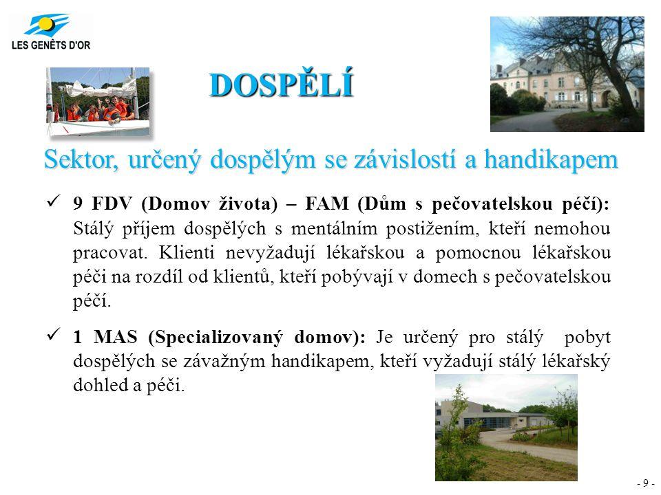 - 9 - DOSPĚLÍ Sektor, určený dospělým se závislostí a handikapem 9 FDV (Domov života) – FAM (Dům s pečovatelskou péčí): Stálý příjem dospělých s mentá