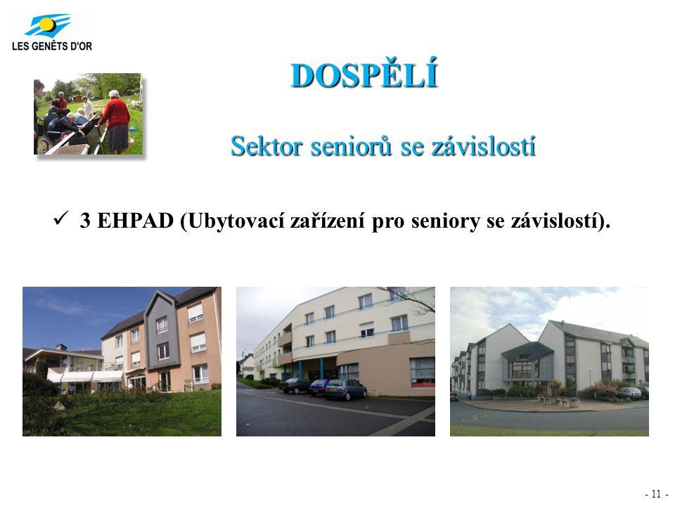- 11 - DOSPĚLÍ Sektor seniorů se závislostí 3 EHPAD (Ubytovací zařízení pro seniory se závislostí).