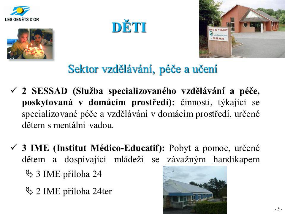 - 5 - DĚTI Sektor vzdělávání, péče a učení 2 SESSAD (Služba specializovaného vzdělávání a péče, poskytovaná v domácím prostředí): činnosti, týkající s