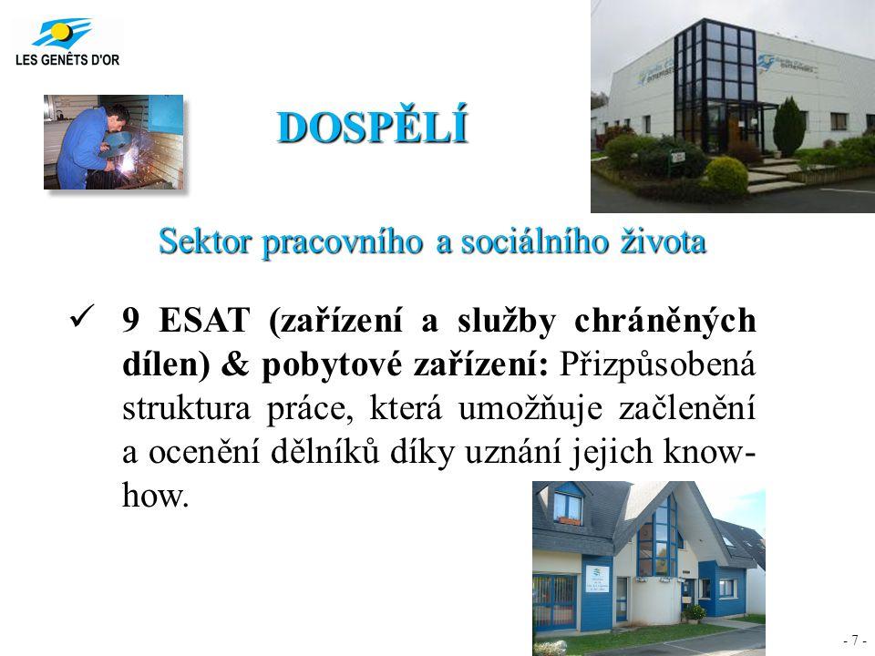 - 7 - DOSPĚLÍ Sektor pracovního a sociálního života 9 ESAT (zařízení a služby chráněných dílen) & pobytové zařízení: Přizpůsobená struktura práce, kte
