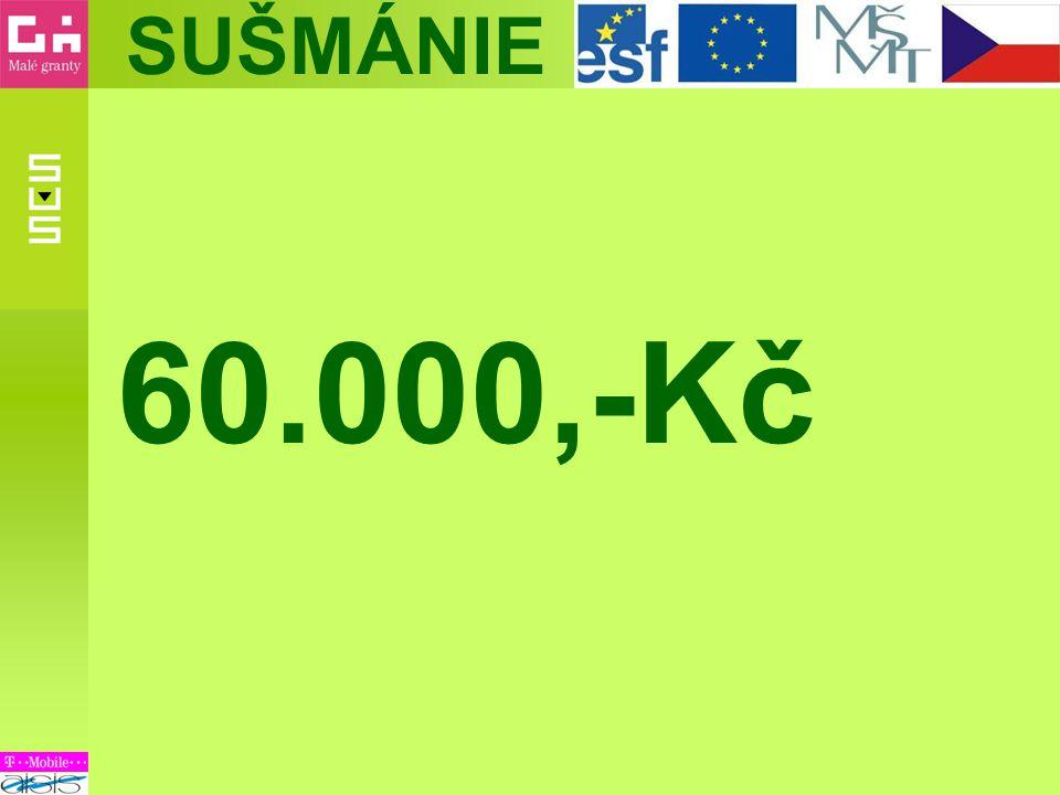 60.000,-Kč
