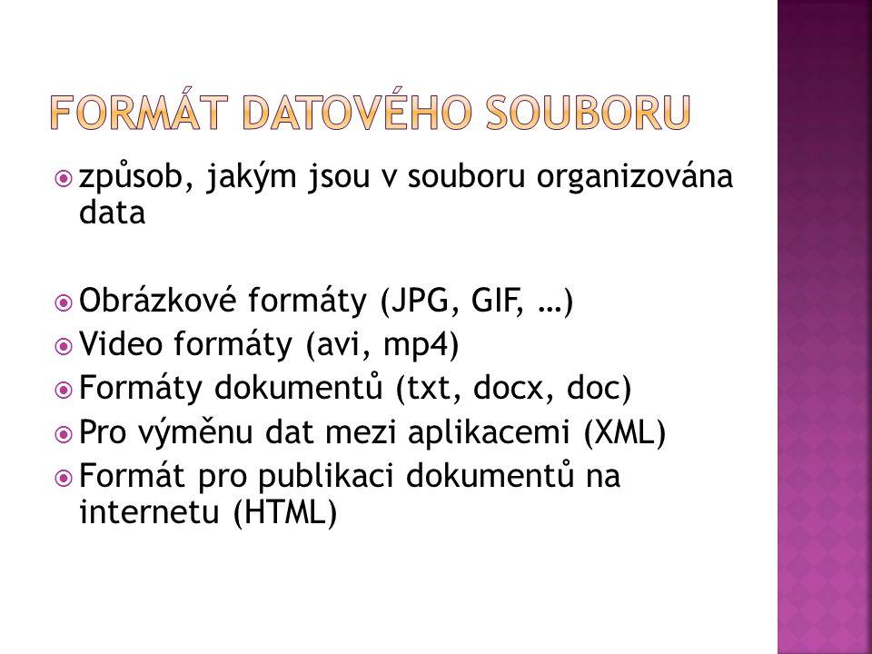  způsob, jakým jsou v souboru organizována data  Obrázkové formáty (JPG, GIF, …)  Video formáty (avi, mp4)  Formáty dokumentů (txt, docx, doc)  Pro výměnu dat mezi aplikacemi (XML)  Formát pro publikaci dokumentů na internetu (HTML)