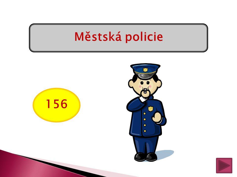 158 Policie ČR
