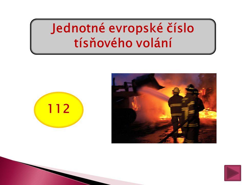 156 Městská policie