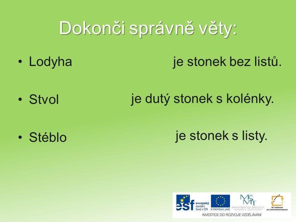 Dokonči správně věty: Lodyha Stvol Stéblo je stonek bez listů. je dutý stonek s kolénky. je stonek s listy.