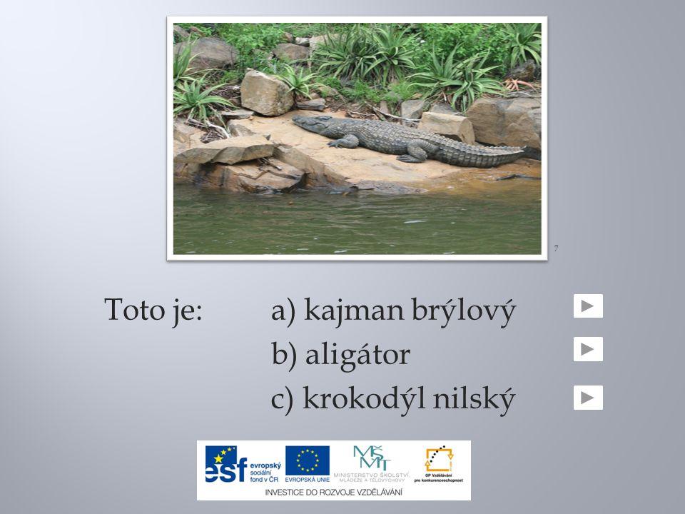 Toto je:a) kajman brýlový b) aligátor c) krokodýl nilský 7
