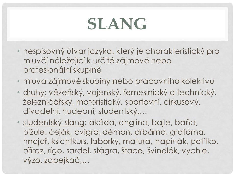 SLANG nespisovný útvar jazyka, který je charakteristický pro mluvčí náležející k určité zájmové nebo profesionální skupině mluva zájmové skupiny nebo