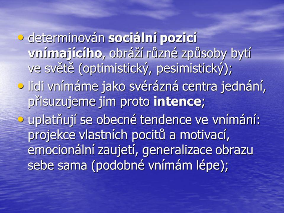determinován sociální pozicí vnímajícího, obráží různé způsoby bytí ve světě (optimistický, pesimistický); determinován sociální pozicí vnímajícího, o