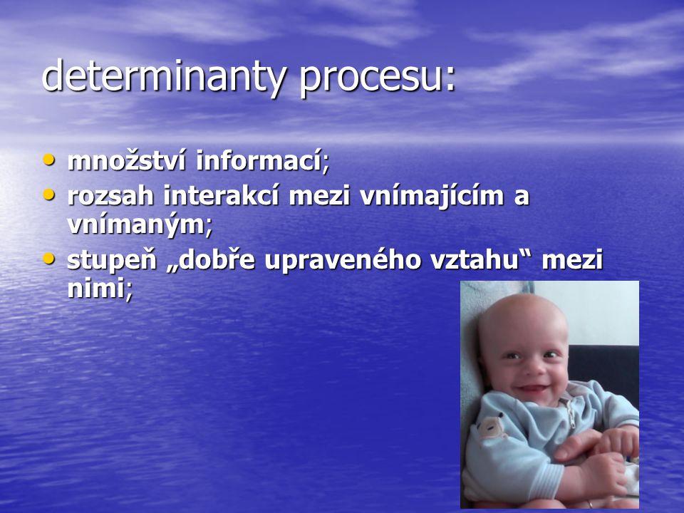 determinanty procesu: množství informací; množství informací; rozsah interakcí mezi vnímajícím a vnímaným; rozsah interakcí mezi vnímajícím a vnímaným