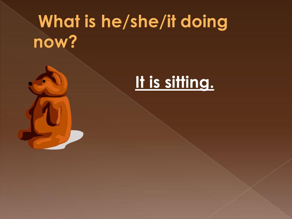 It is sitting.