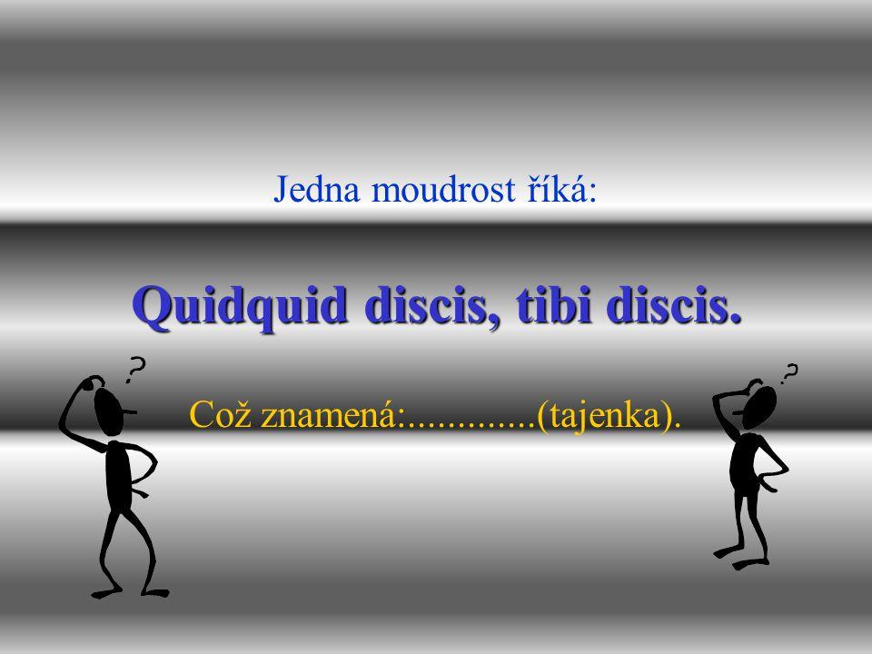 Quidquid discis, tibi discis. Jedna moudrost říká: Což znamená:.............(tajenka).