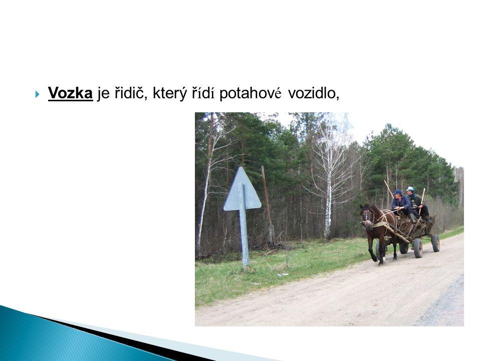  Vozka je řidič, který ř í d í potahov é vozidlo,