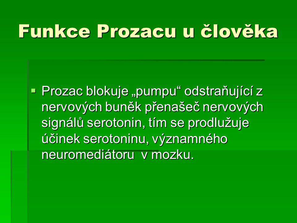 """Funkce Prozacu u člověka  Prozac blokuje """"pumpu"""" odstraňující z nervových buněk přenašeč nervových signálů serotonin, tím se prodlužuje účinek seroto"""