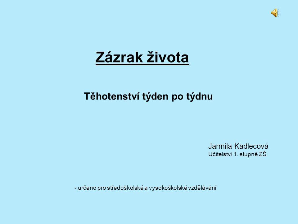 Těhotenství týden po týdnu Jarmila Kadlecová Učitelství 1. stupně ZŠ Zázrak života - určeno pro středoškolské a vysokoškolské vzdělávání