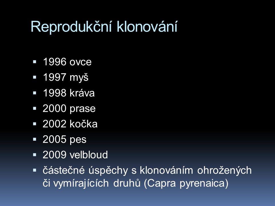 Reprodukční klonování  1996 ovce  1997 myš  1998 kráva  2000 prase  2002 kočka  2005 pes  2009 velbloud  částečné úspěchy s klonováním ohrožených či vymírajících druhů (Capra pyrenaica)