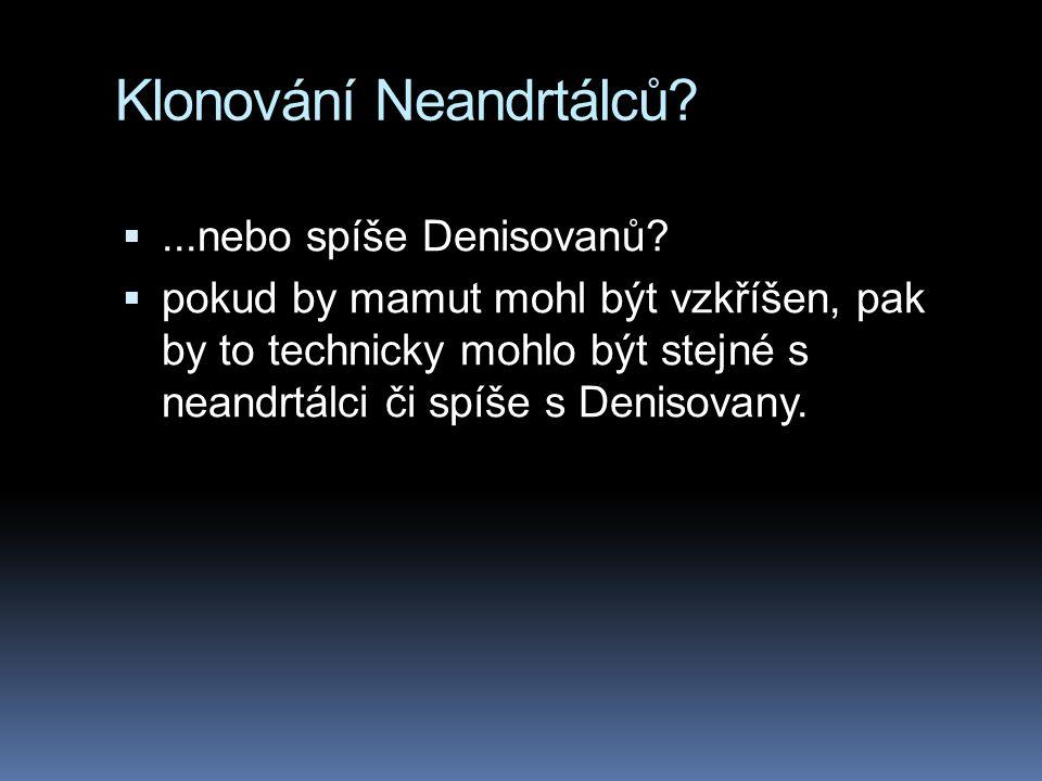Klonování Neandrtálců? ...nebo spíše Denisovanů?  pokud by mamut mohl být vzkříšen, pak by to technicky mohlo být stejné s neandrtálci či spíše s De