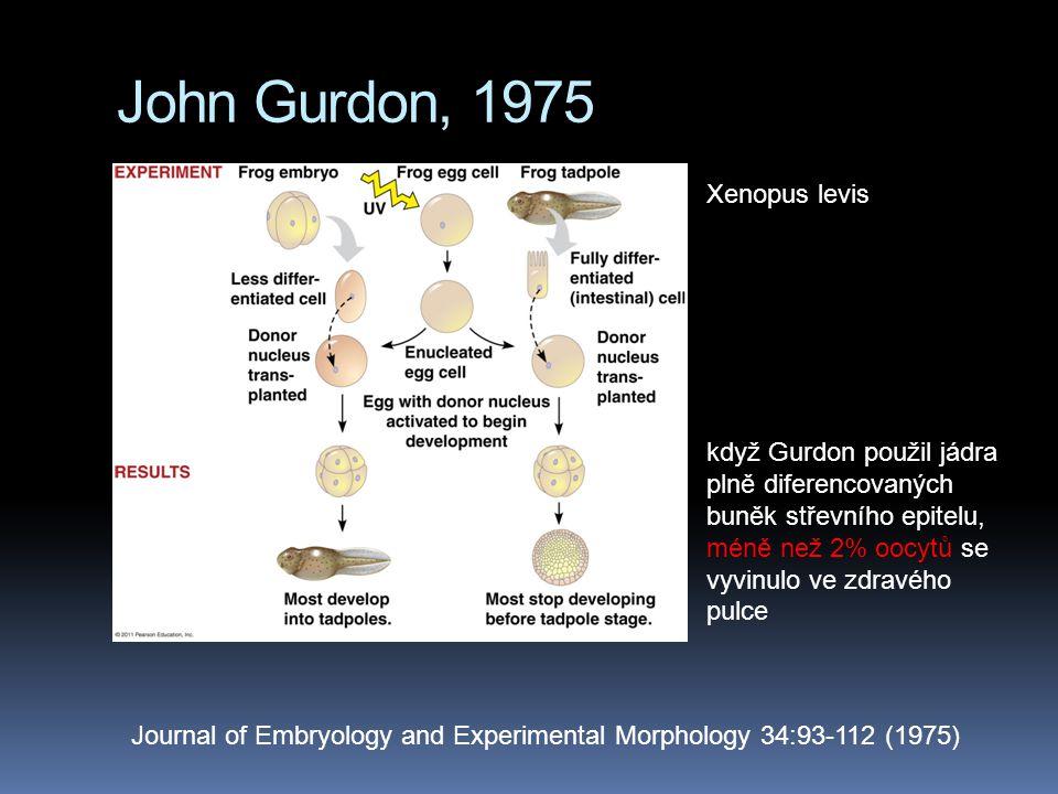 John Gurdon, 1975 Journal of Embryology and Experimental Morphology 34:93-112 (1975) když Gurdon použil jádra plně diferencovaných buněk střevního epitelu, méně než 2% oocytů se vyvinulo ve zdravého pulce Xenopus levis