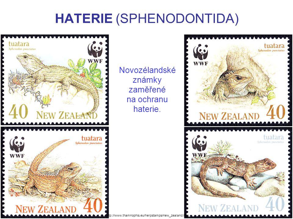 HATERIE (SPHENODONTIDA) Novozélandské známky zaměřené na ochranu haterie. http://www.thamnophis.eu/herpstamps/new_zealand.htm