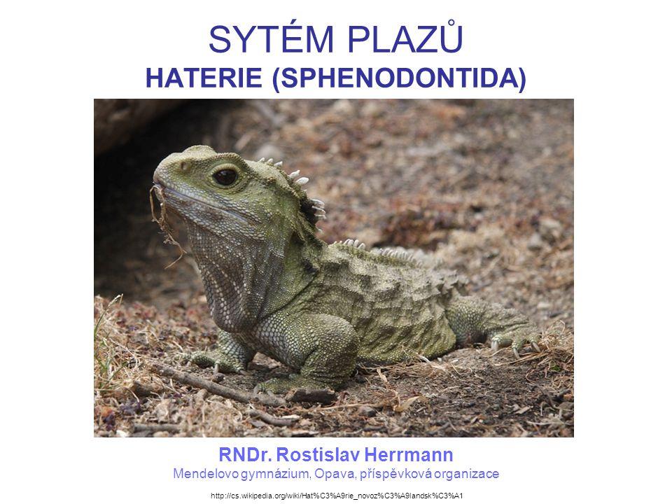 SYTÉM PLAZŮ HATERIE (SPHENODONTIDA) RNDr. Rostislav Herrmann Mendelovo gymnázium, Opava, příspěvková organizace http://cs.wikipedia.org/wiki/Hat%C3%A9