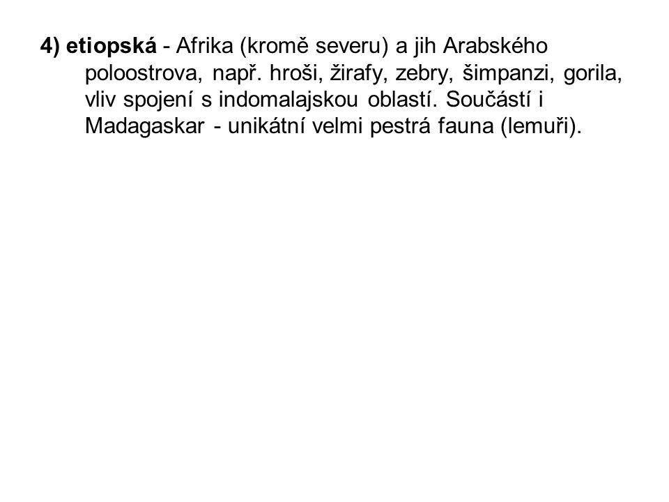 4) etiopská - Afrika (kromě severu) a jih Arabského poloostrova, např.
