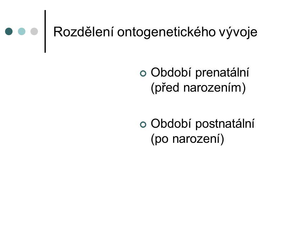 Rozdělení ontogenetického vývoje Období prenatální (před narozením) Období postnatální (po narození)