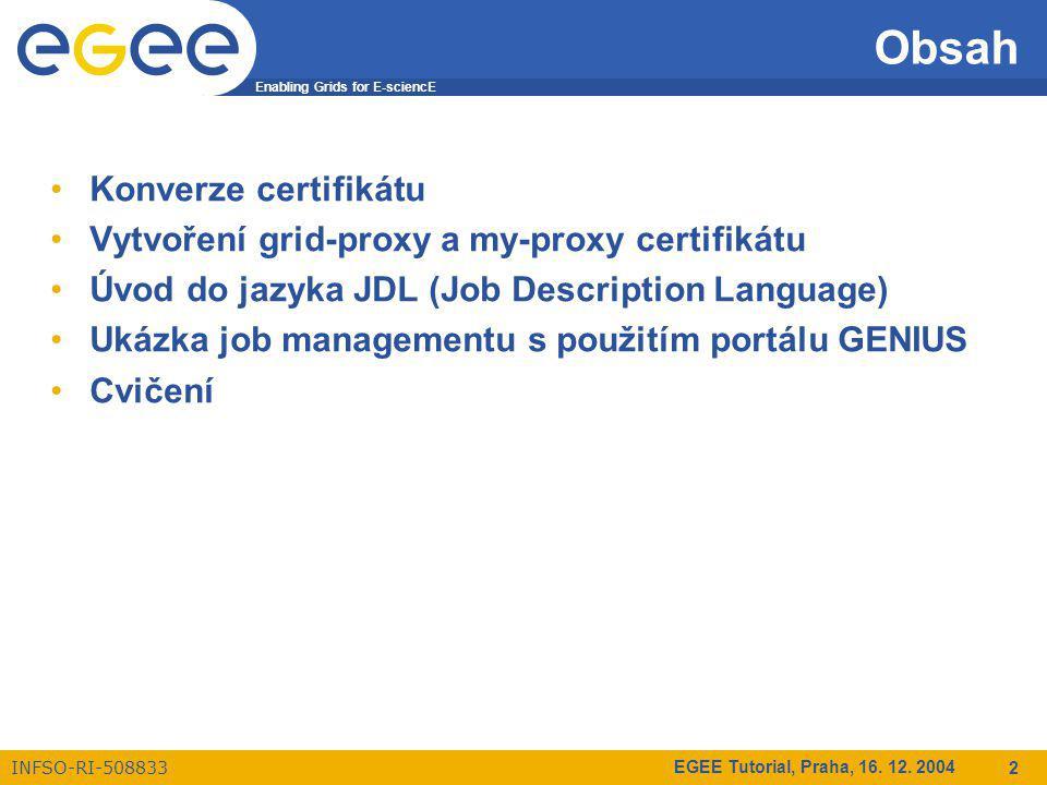 Enabling Grids for E-sciencE INFSO-RI-508833 EGEE Tutorial, Praha, 16.